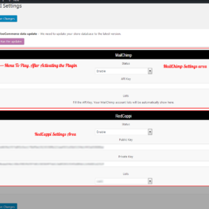 WooCommerce Customer Newsletter Campaign (MailChimp | RedCappi)